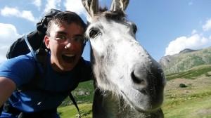 Minu horse selfie